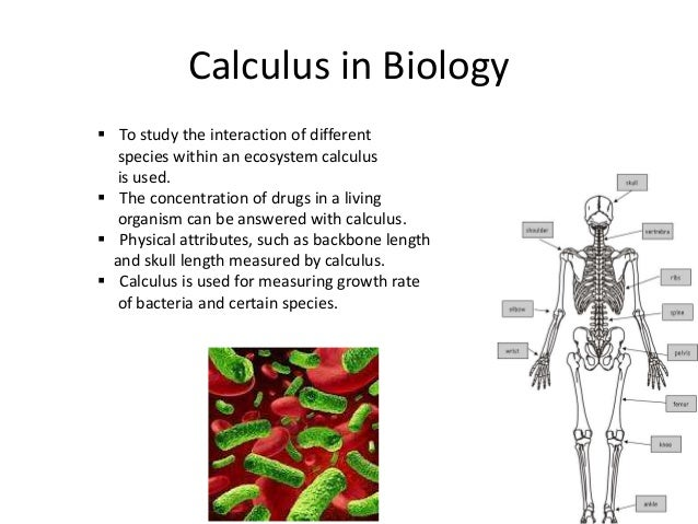 application of calculus in technology